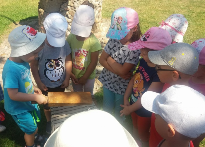 Przedszkole Prywatne Pszczółka, dzieci w krainie rumianku