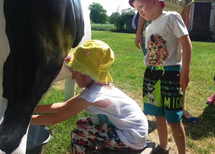 Przedszkole Pszczółka w Lublinie, dzień dziecka w krainie rumianku